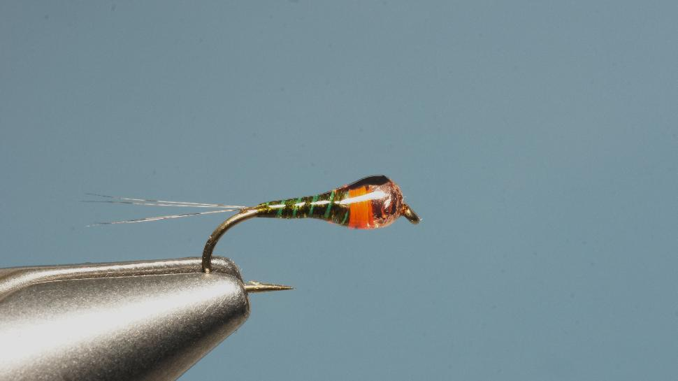 Step 6 tying instructions for the Pliva Perdigon Nymph