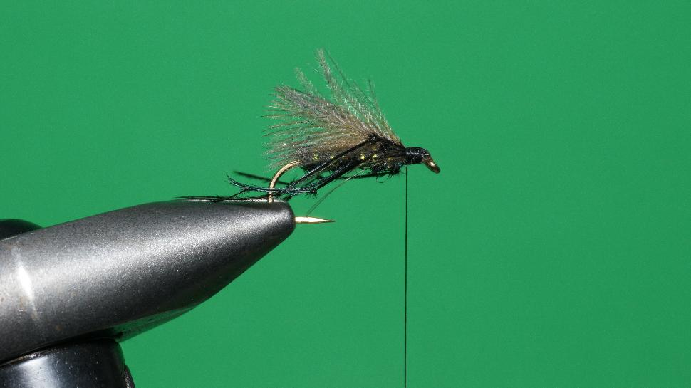 Step 5 tying instructions for the Bristol Hopper