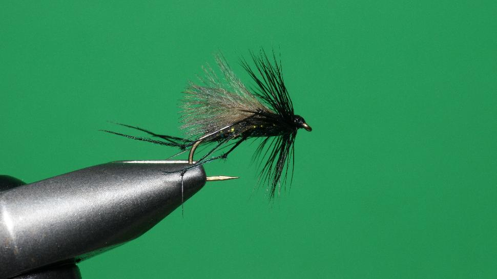 Step 7 tying instructions for the Bristol Hopper
