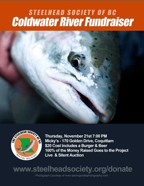 Coldwater River Habitat Restoration Project Fundraiser