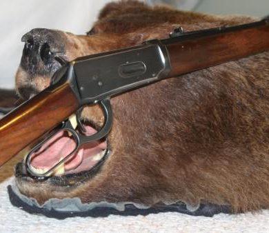 Grandpa's gun on a bear rug