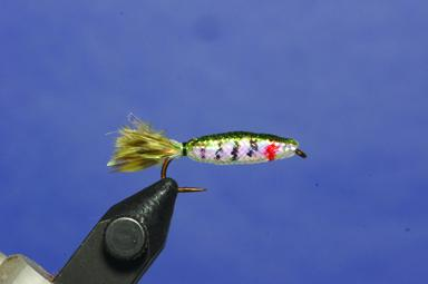 Step 5 tying instructions for the Foam Minnow