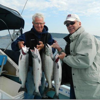 Coho caught on herring strip