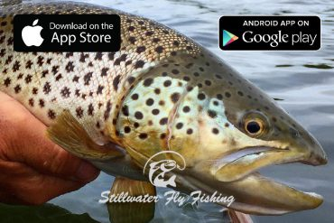 Stillwater Fly Fishing App