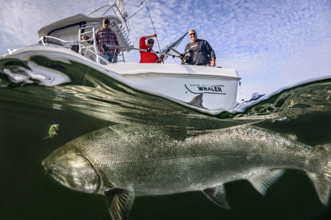 Fishing Nootka Sound: Big Fish & Bigger Tales Await
