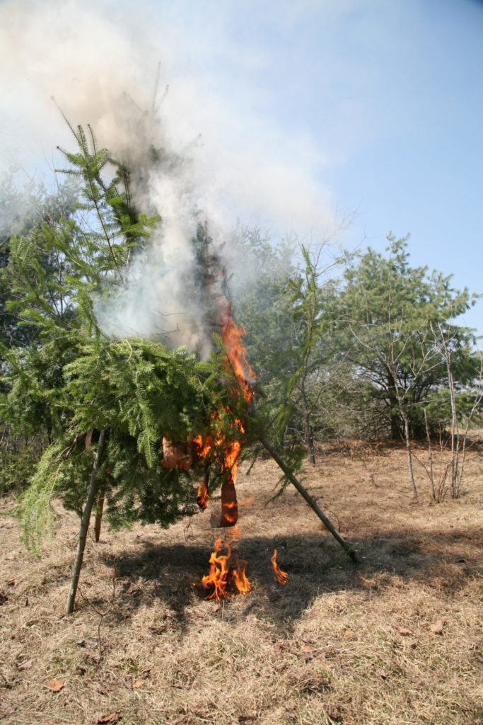 Burning fresh (green) brush can cause a lot of smoke and attract attention when you need it the most.