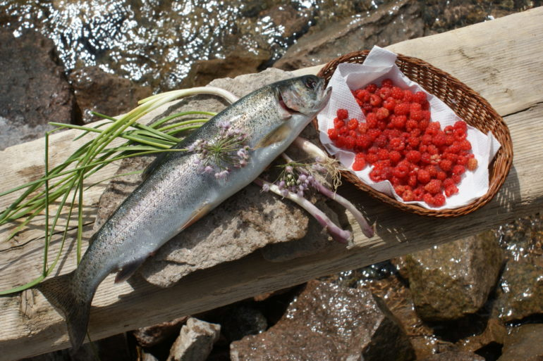 Trout With Wild Onion Stuffing & Raspberry Sauce