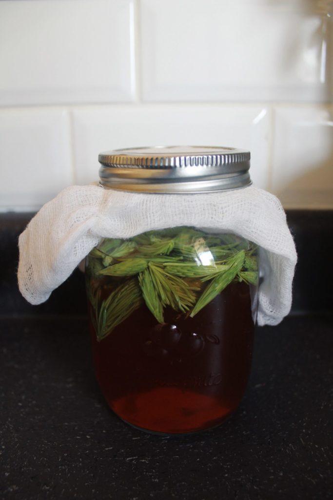 Spruce infused vinegar. Credit: Raeanne O'Meara.