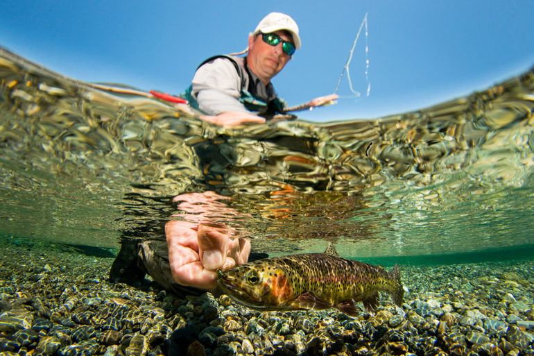 Catch and release trout. Photo by Eiko Jones.