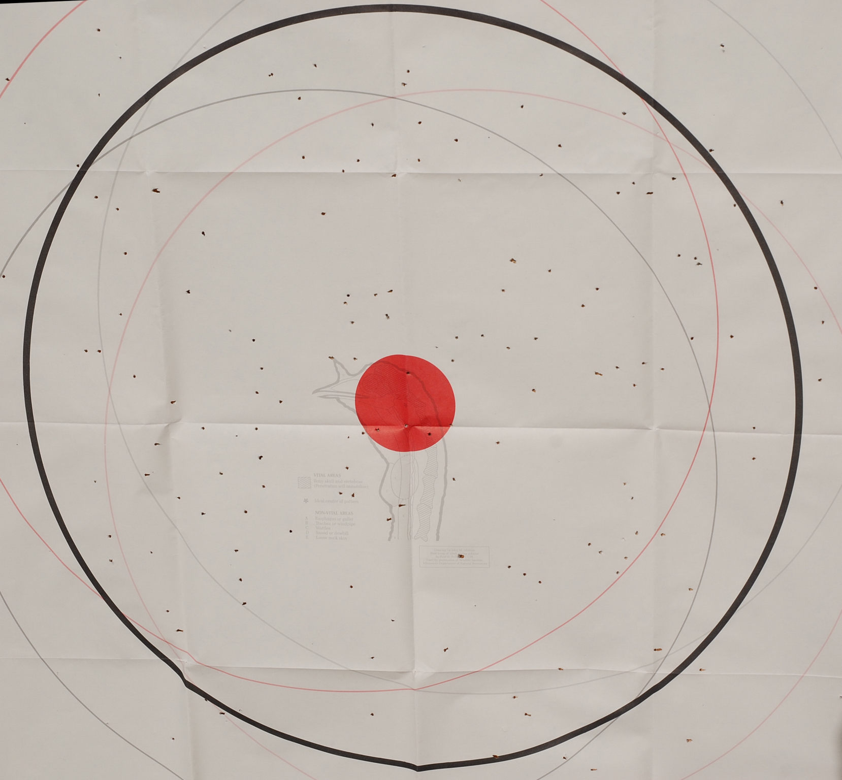 At 40 yards the A400, with stock chokes, provided tight and uniform shot distribution.