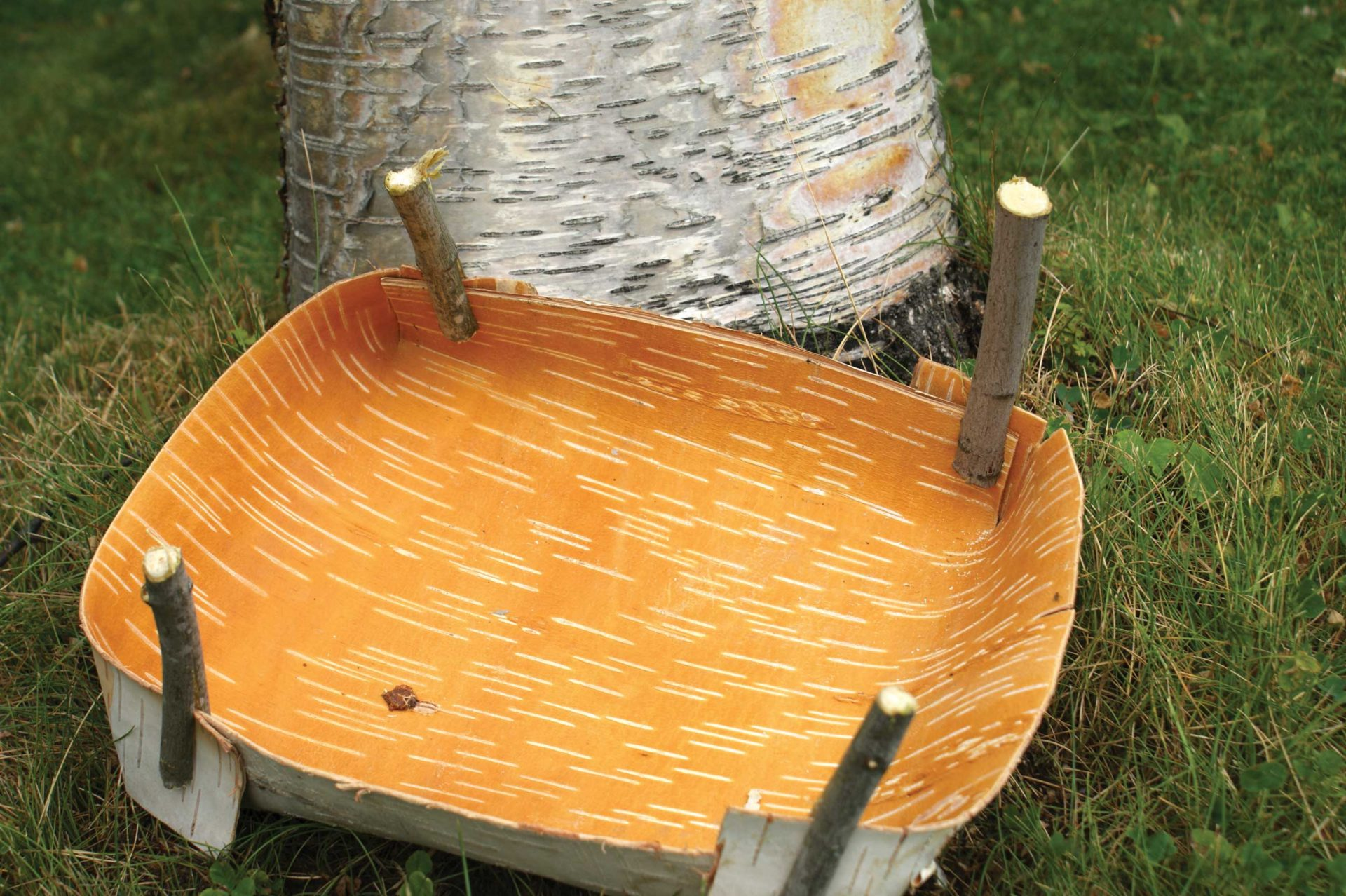 How To Make A Birch Bark Cooking Vessel