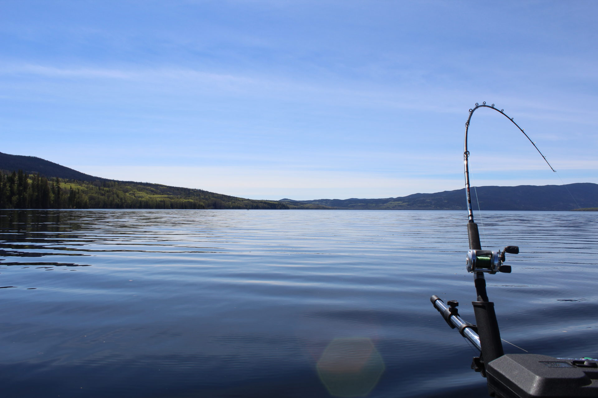 François Lake is a favourite fishing destination in the author's family, so be sure to add it to your must-fish list.
