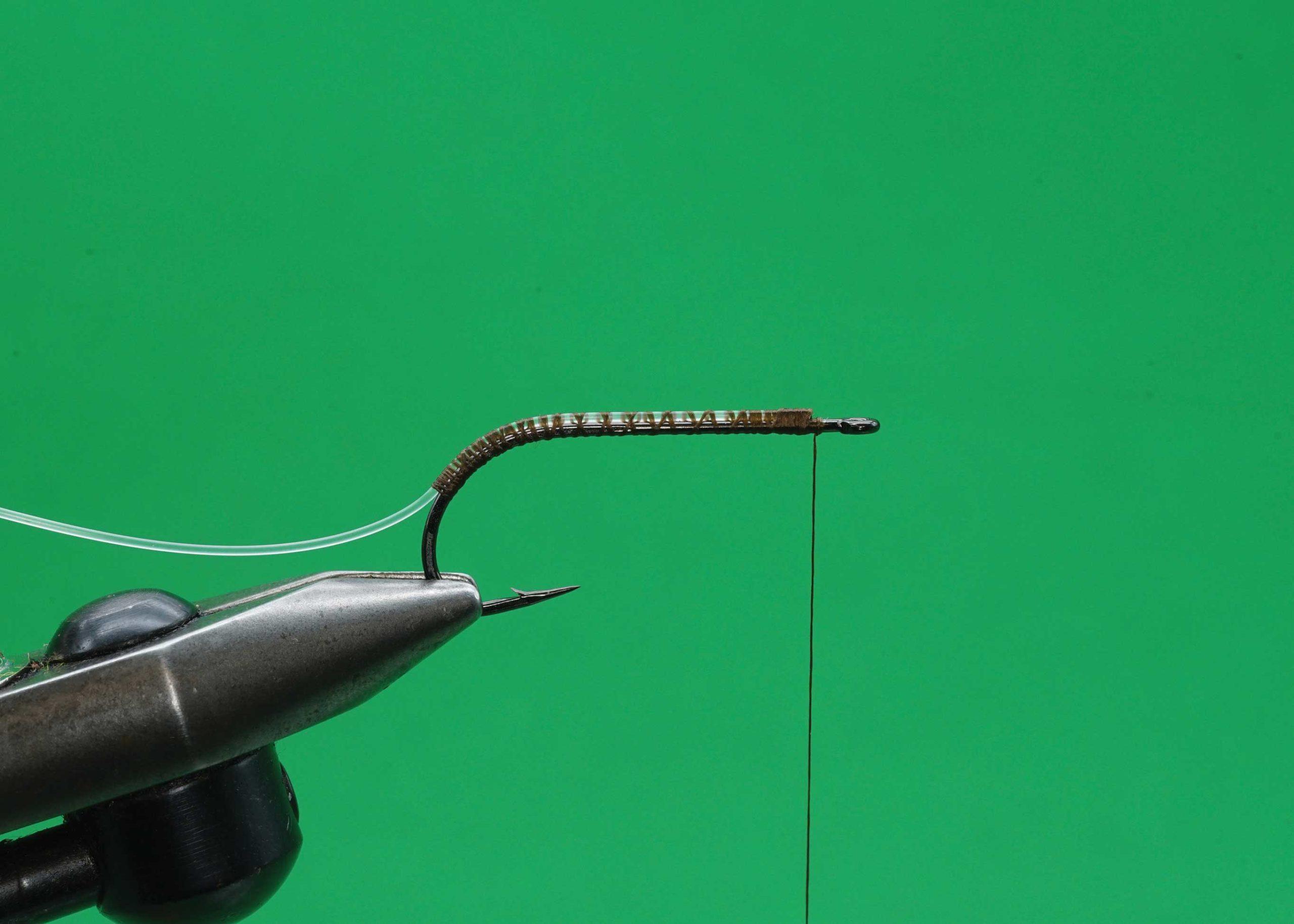 Predator Worm: Step 1.