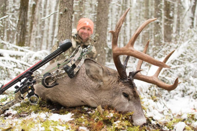 A properly set-up decoy brought this buck within shooting range.