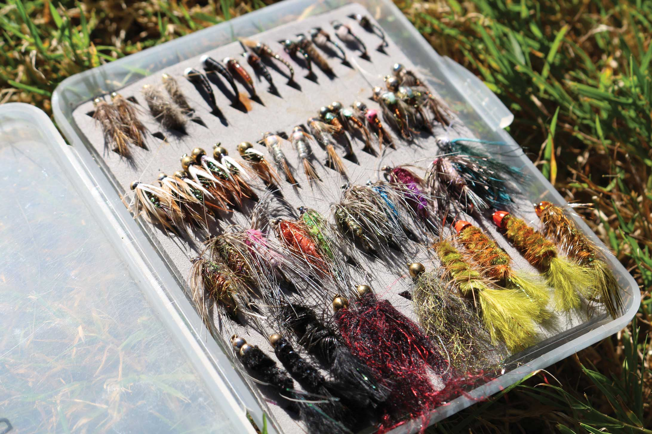 A small selection of essential flies should do the trick.