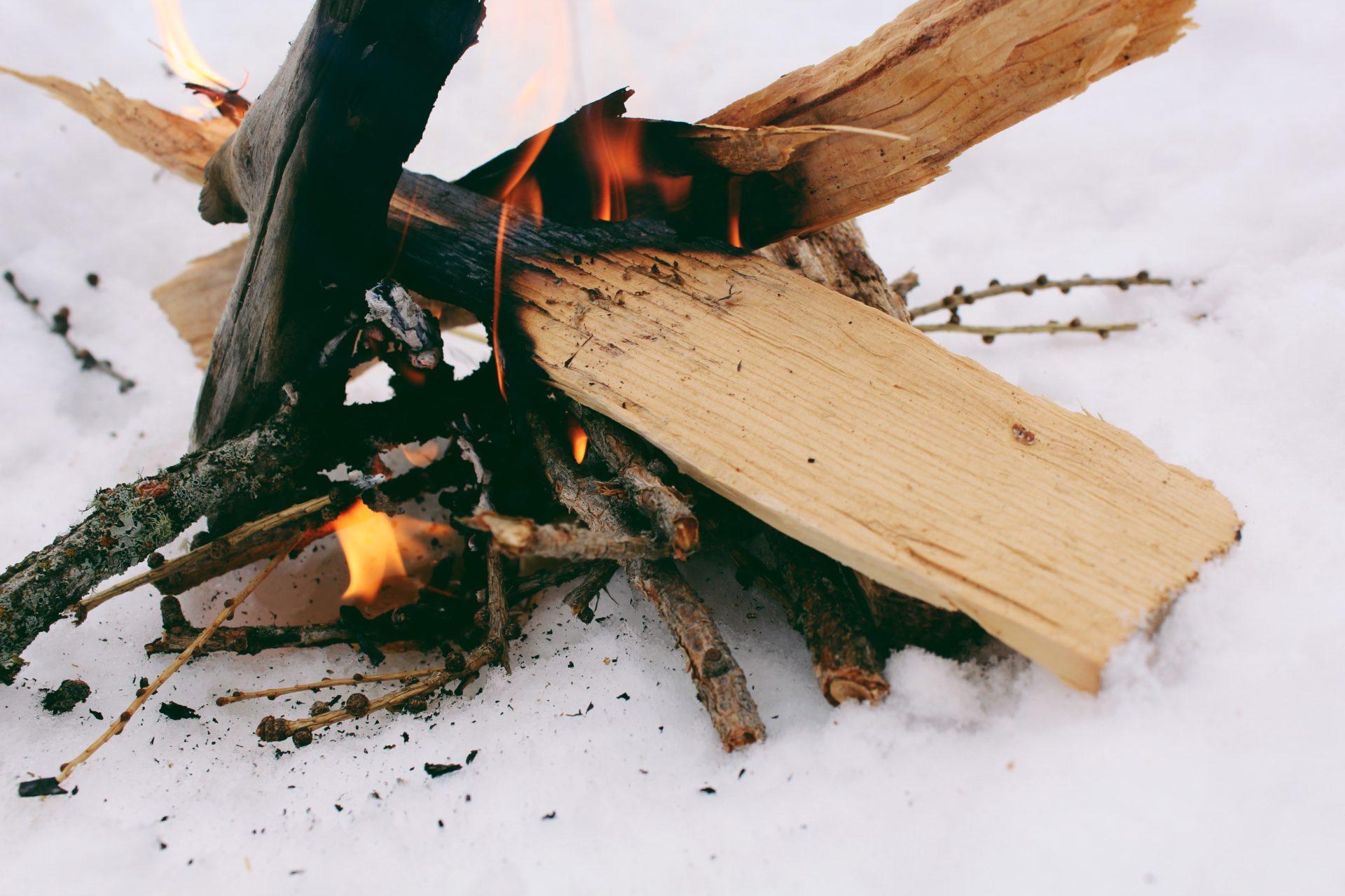 Fire. Credit: Raeanne O'Meara.