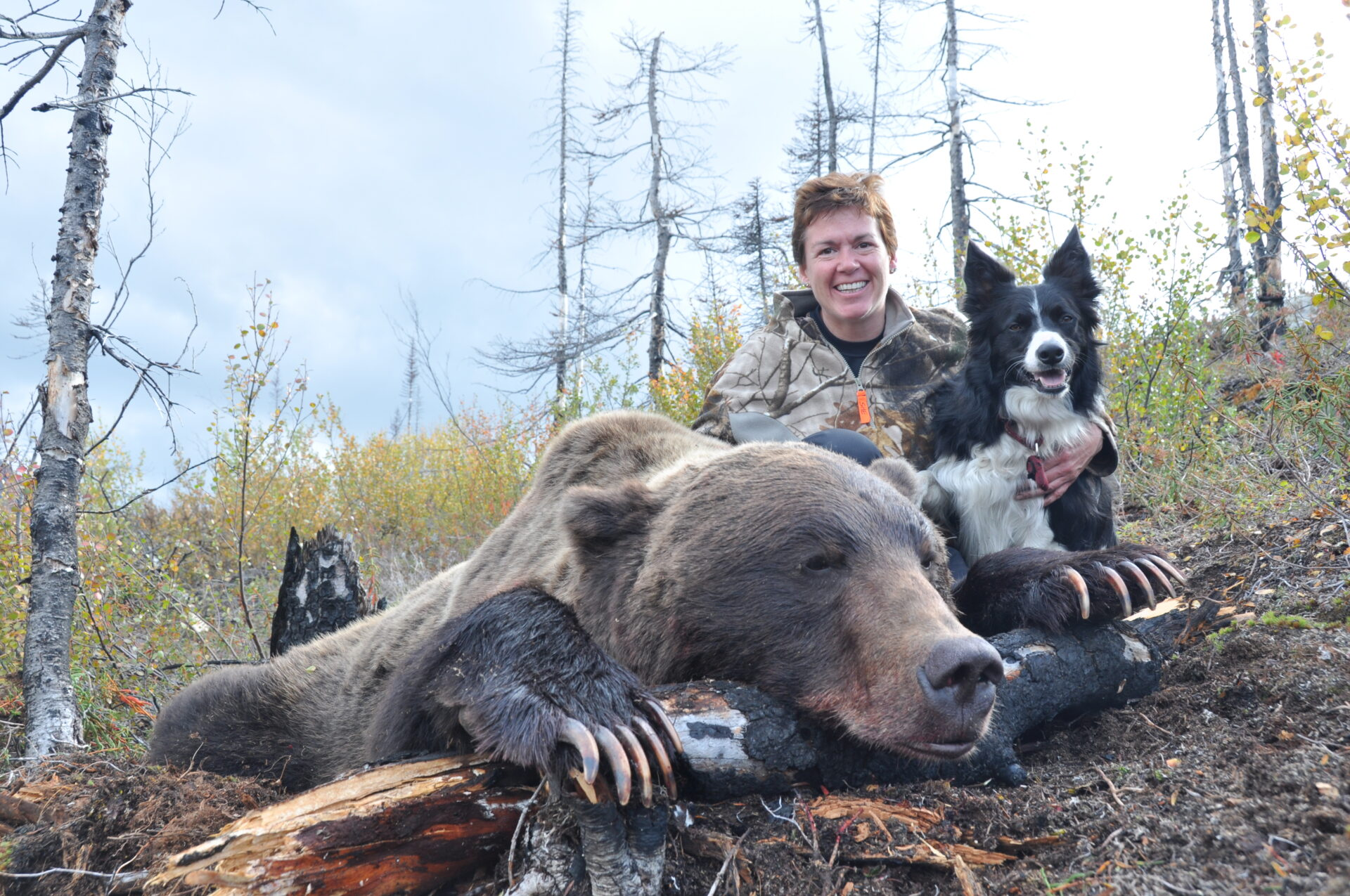 Jet, at 16 months old, accompanied us on a grizzly hunt.
